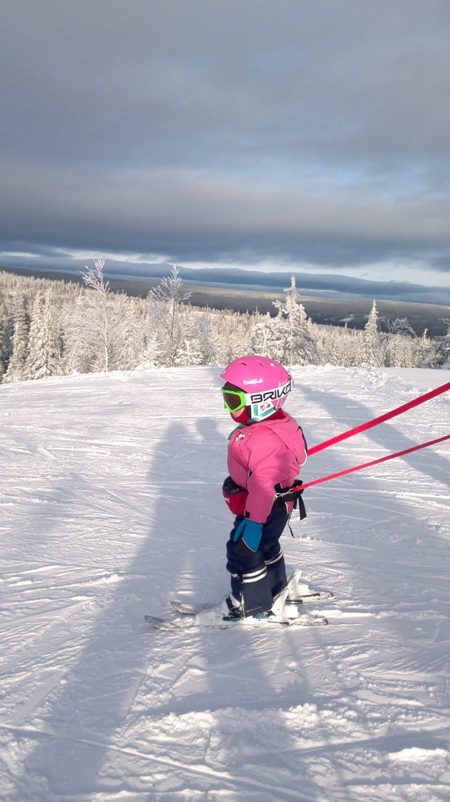 Talvimuisto: 2-vuotias Roosa laskettelee