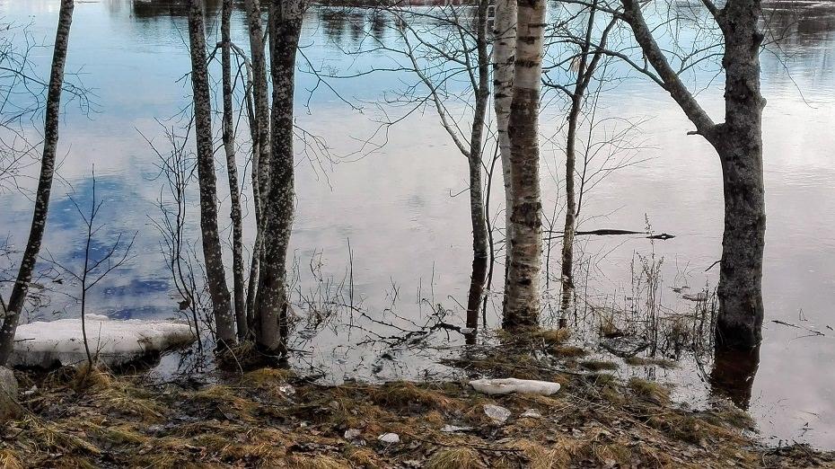 joki tulvii