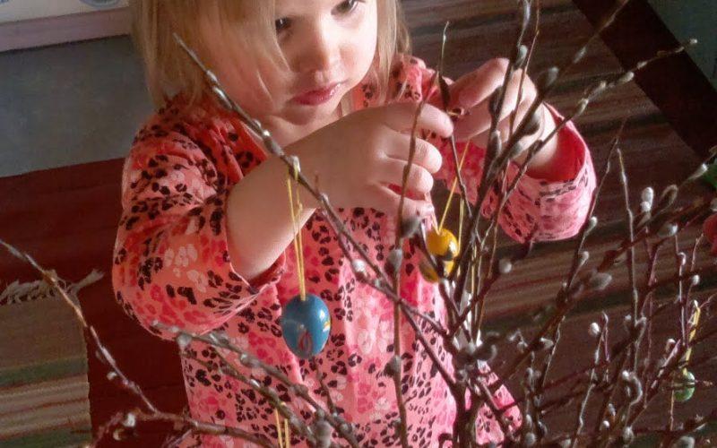 lapsi koristelee pääsiäiseksi pajunoksia